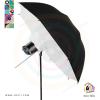 Studio Show 400 with Deep Umbrella
