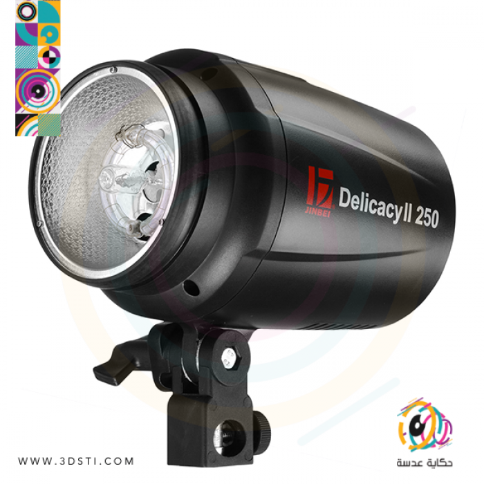 DII-250 flash head